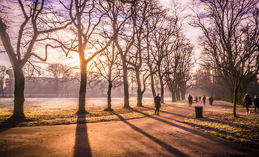 Hyde park in the morning sun