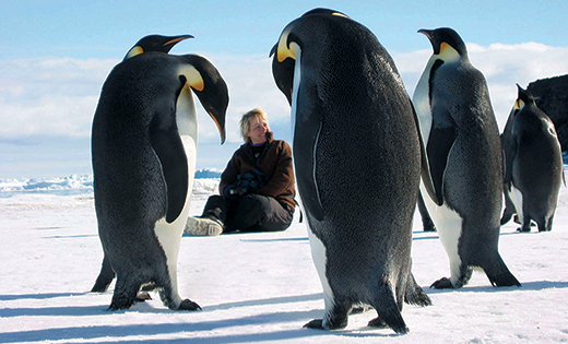 Professor Dame Jane Francis with penguins